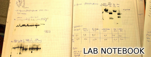 Lab Notebook Archival Services in Fremont, San Francisco Bay Area, California